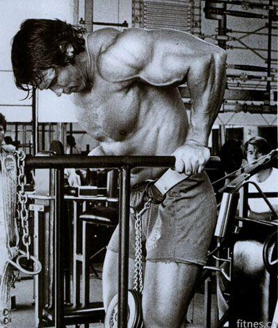双杠臂屈伸打造胸肌围度